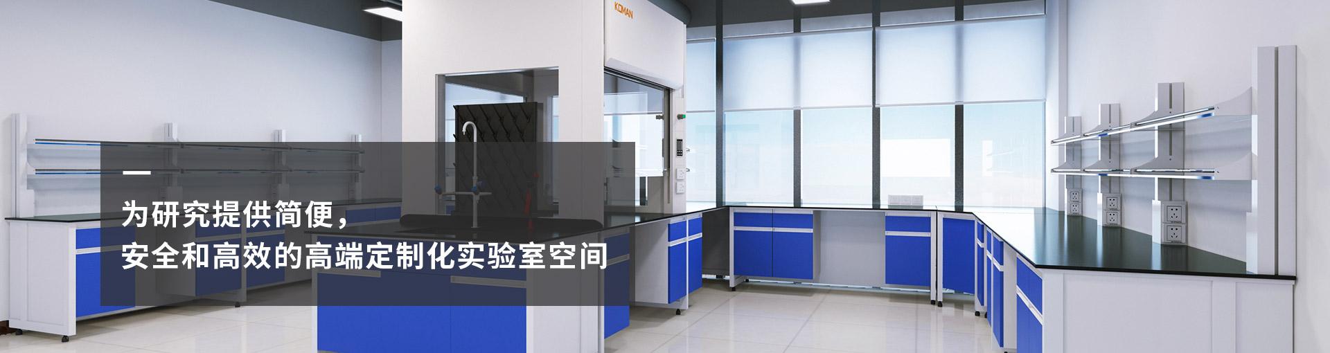 实验室实验台/实验室通风柜/实验室家具